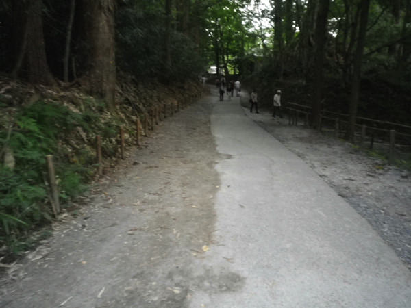 chusonzi-meganebashiIMGP0092