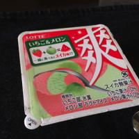sou-ichigo-meron1